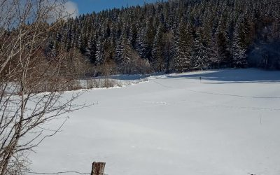 0014 Val Foncine