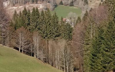 Val Foncine en automne